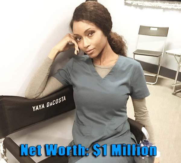 Image of Actor, Yaya DaCosta net worth is $1 million