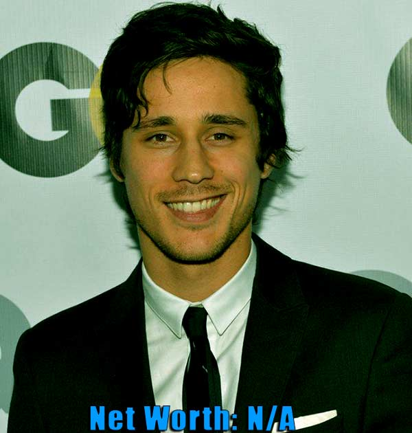 Image of Film actor, Peter Gadiot net worth is currently not available