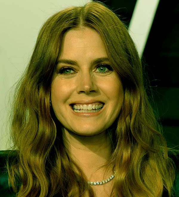 Image of wiki-bio of American actress, Amy Adams