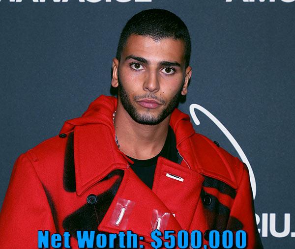 Image of Model, Younes Bendjima net worth is $500,000