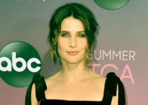 Image of Who is Cobie Smulders married to. Meet her husband and kids