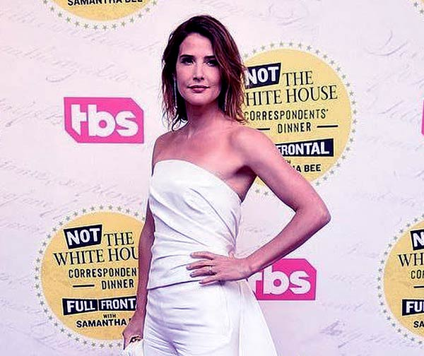 Image of Canadian actress, Cobie Smulders